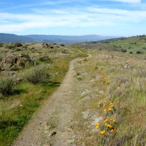 Rocky Ridge Trail, Santa Teresa County Park, Hike No. 7