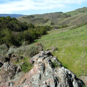 View down Big Oak Valley, Santa Teresa County Park, Hike No. 7
