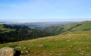 Hike No. 8 - Russian Ridge OSP - Ridge/Borel Hill/Hawk Ridge/Ancient Oak Trails