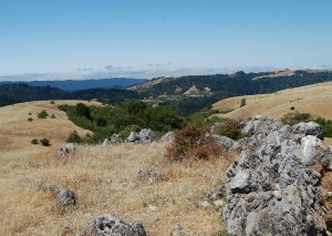Summit of Black Mountain 2,812' looking west towards the Coast Range