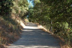 Hike No. 18 - Heinz / Santa Rosa OSP