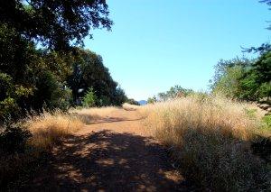 Skid Row Trail Hike No 17