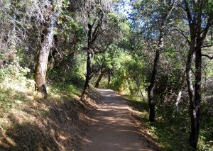 Coyote Trail Hike 19