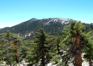 Red Tahquitz Peak From the Trail