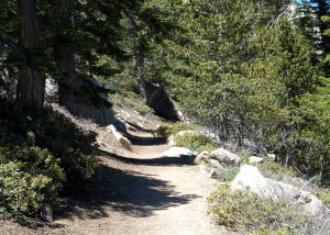 Starting to climb Tahquitz Peak Trail hike no 20