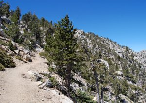 Climbing Tahquitz Peak Trail Hike No 20