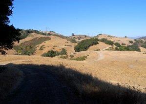 Woods Road Trail Hike No 21