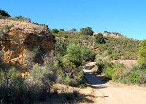 Trail climbing up the mountain Hike No 21