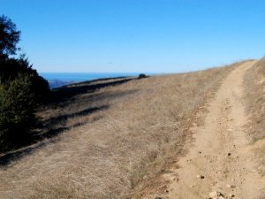 Ridge Trail Cutoff and the Pacific Ocean Hike No 31