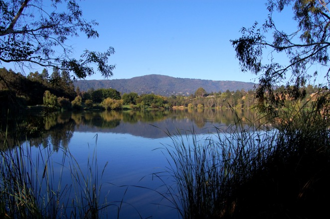 Vasona Lake and the Santa Cruz Mountains