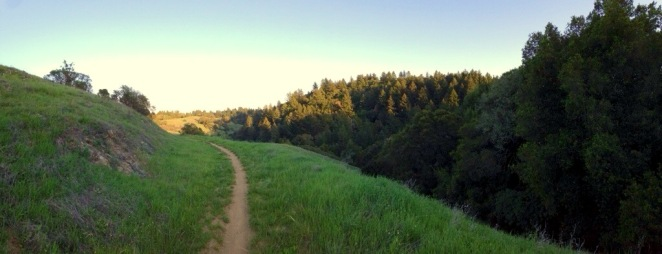 Chasing the Sun + Long Ridge OSP + Santa Cruz Mountains, CA + DJGrogan