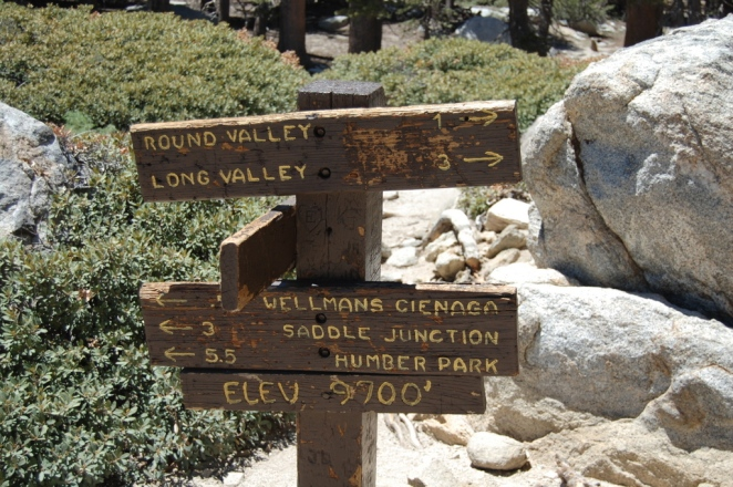 Lots of trails in Mt San Jacinto State Park!  Signpost at 9700 feet
