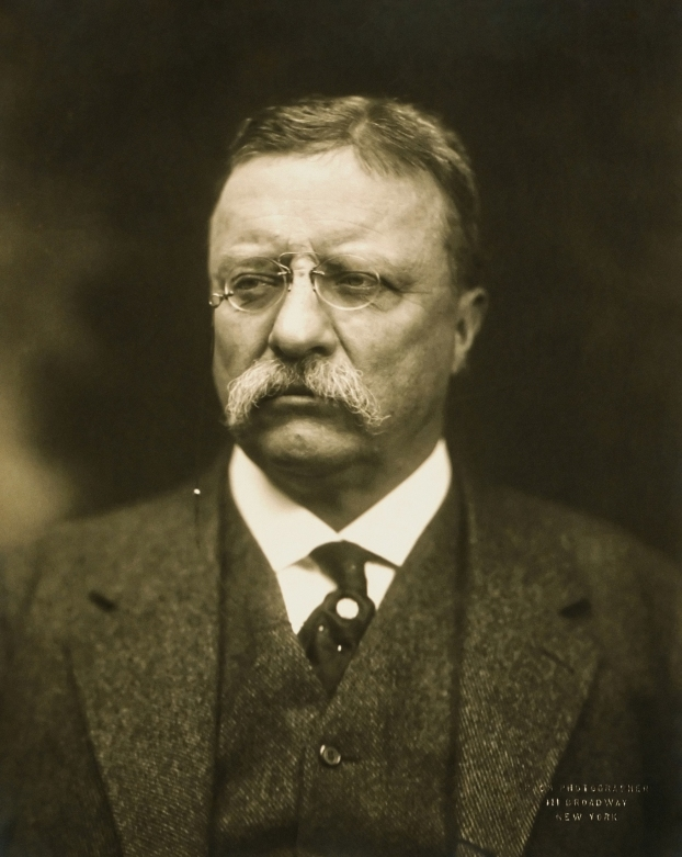Image result for teddy roosevelt walk softly and carry a big stick