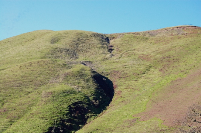 Natural Lines - Calaveras Fault Trail