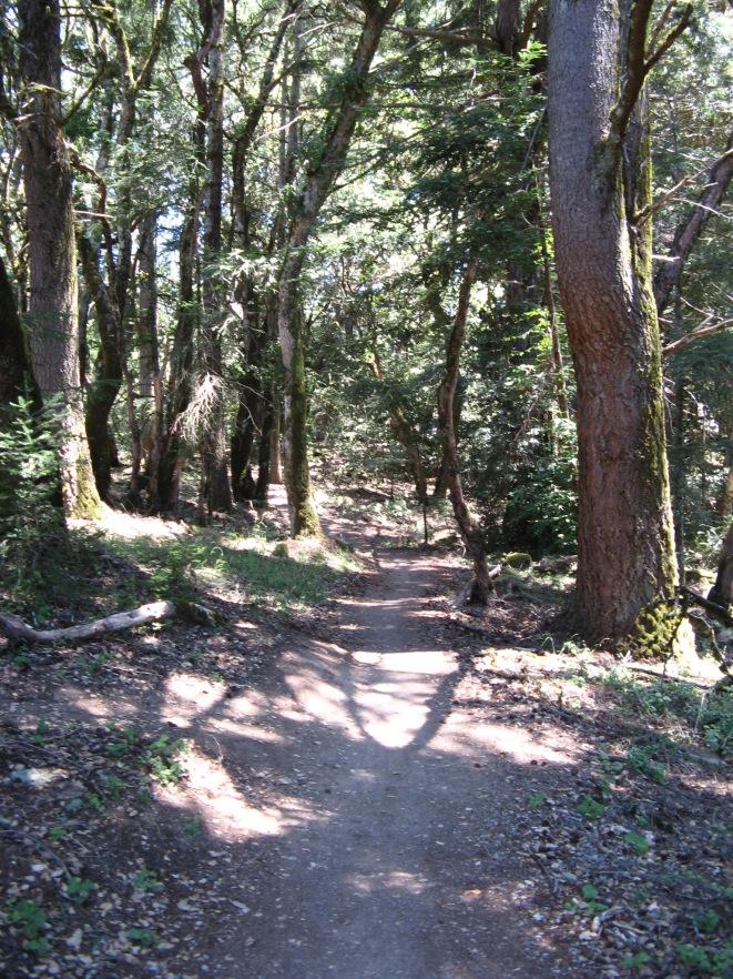ECDM OSP Sierra Morena Trail