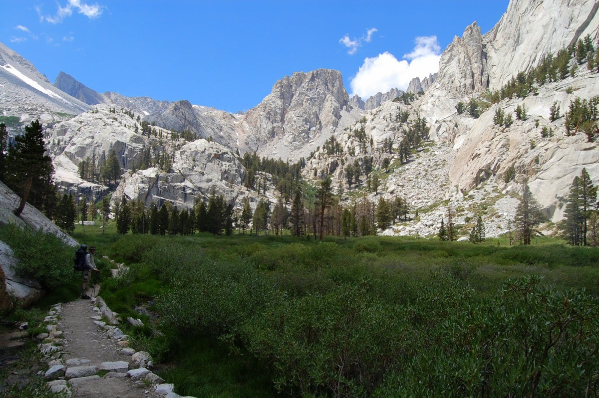 Trailside Meadow in the Sierras